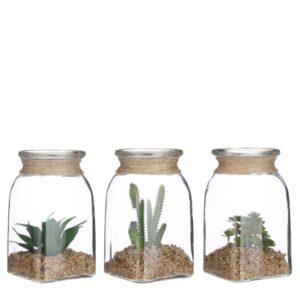 Composizione piante grasse in vaso vetro art.1083170