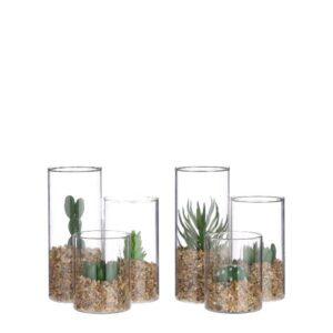 Composizione piante grasse in vaso vetro art.1083177